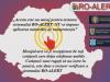 Sistemul RO-ALERT este testat în judeţul Buzău