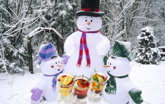 smiley iarna2