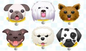 Zâmbete… canine