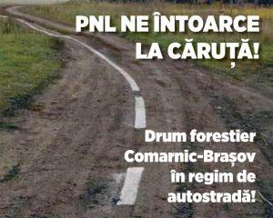 De ce să facem autostrăzi, când avem drumuri forestiere? (P)